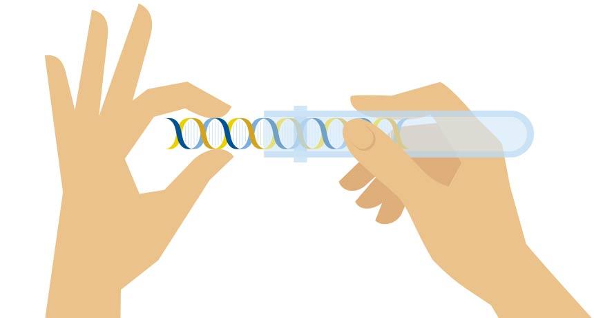 Секвенирование экзома или генома: подготовка данных и анализ результатов для начинающих