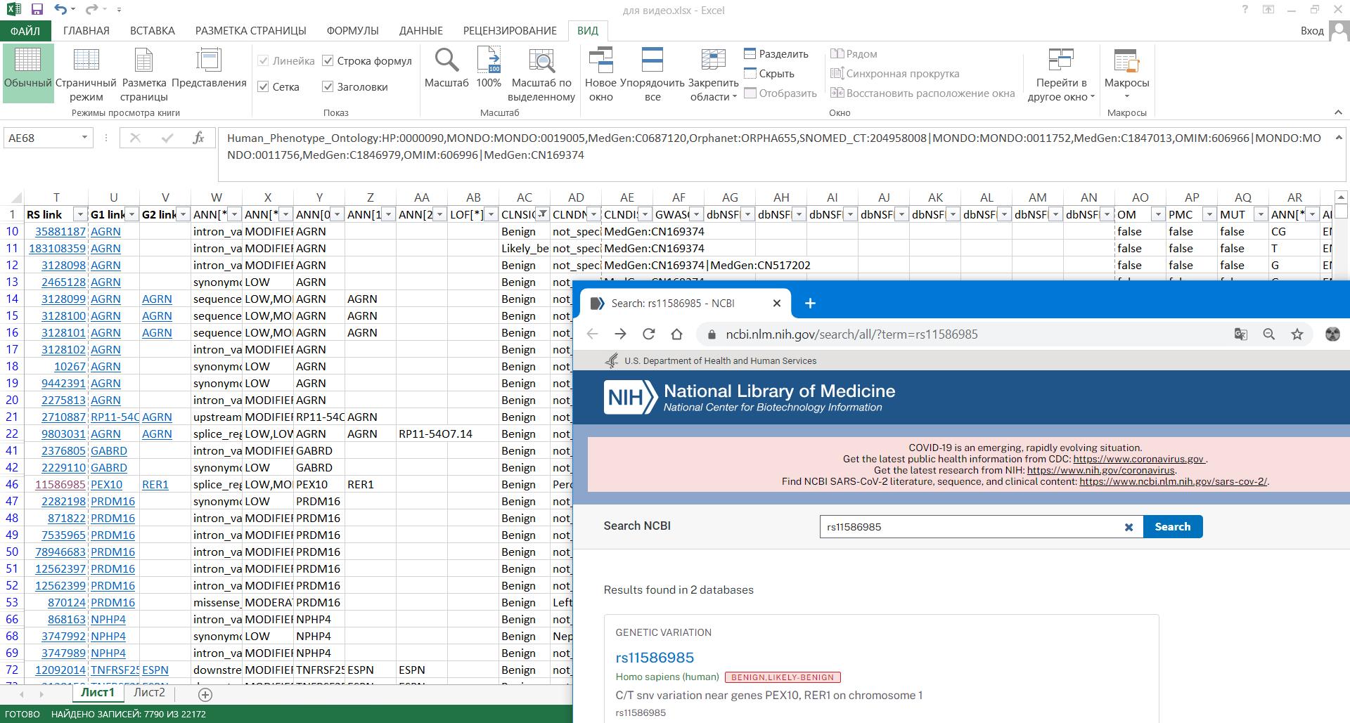 Часть 4. Инструменты интерпретации и анализ данных секвенирования в Excel