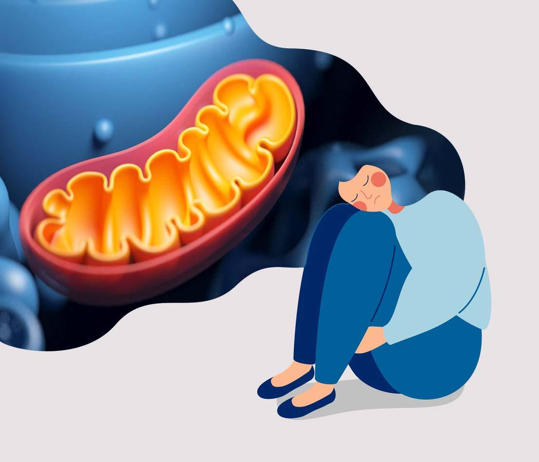 СДВГ связано с митохондриальной дисфункцией